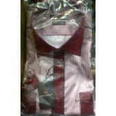 Molten Short Sleeve Red Stripe Shirt