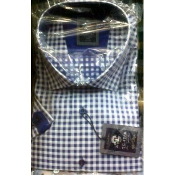 Curtis Blue and white short sleeve shirt