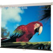 "Projection Screen (70"" X 70"")"